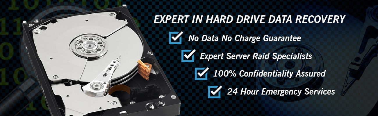 Data Recovery Service In Delhi